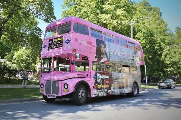 Halifax Big Pink Hop On Hop Off Tour