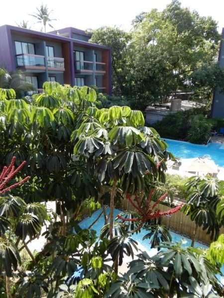 Holiday Inn Express Phuket Patong Beach Central Courtyard