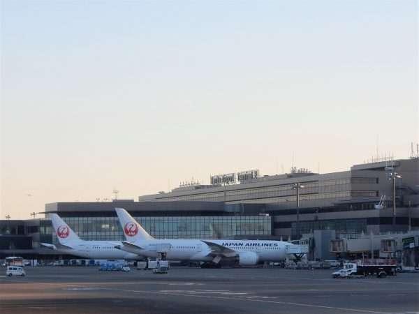 JAL Tokyo Airport Gates