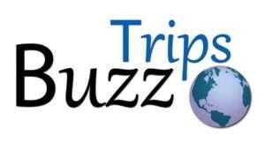 Buzz Trips Logo