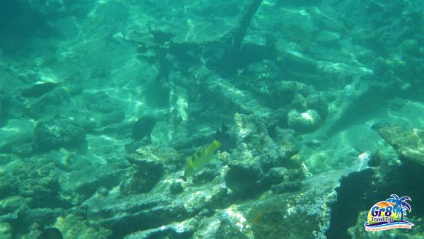 Million Dollar Point Underwater Artifacts