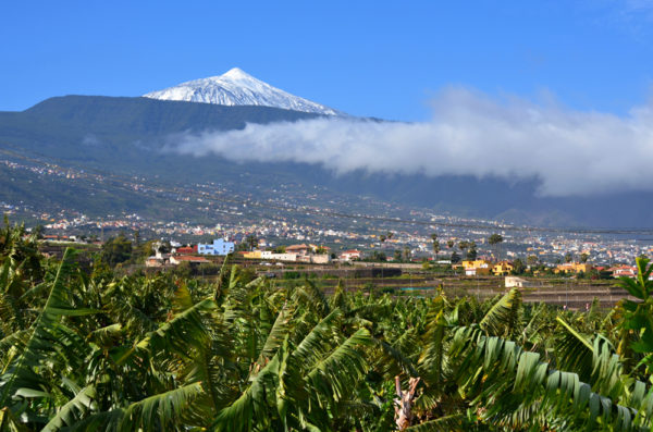 Mount Teide View From Tenerife