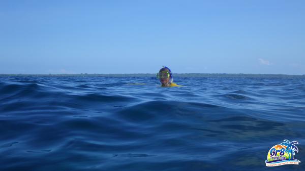 Snorkeling Million Dollar Point